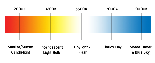 Best Hid Color Headlight Color Guide Best Headlight Bulbs